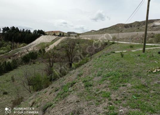 Merzifon Kayadüzü Köyü'de Kiralık Bahçe - Arsa