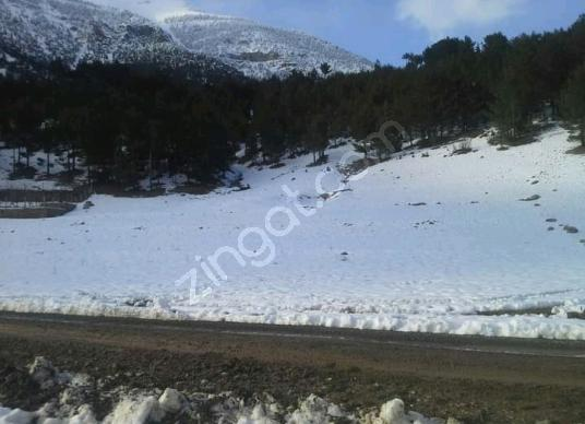 POZANTI YENİ KONACIK EFES SİTESİNİN ALTINDA 400 METRE ARSA - Manzara