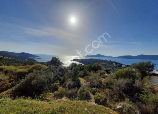 Muğla Milas Kıyıkışlacık Mahallesi Zeytinlikuyu Deniz Manzaralı - Manzara