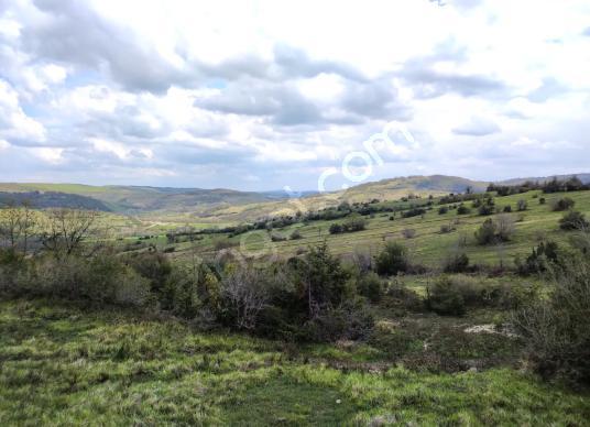 Kandıra Selametli Köyünde Yatırımlık Arsa - Arsa
