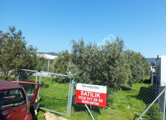 SEZEN KAPTAN'DAN İZMİR FOÇA BAĞARASI'NDA HOBi BAHÇESi - Açık Otopark
