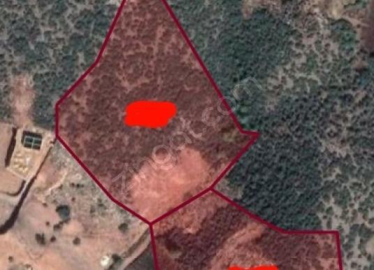 Korkmaz Group tan Alanya İmamlı da Satılık 46000 m2 Tarla - Kat Planı