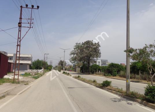 BESTE'DEN MIDIK MAH. T.ORHAN CD. CİV. 635 M2 İMARLI SATILIK ARSA - Sokak Cadde Görünümü