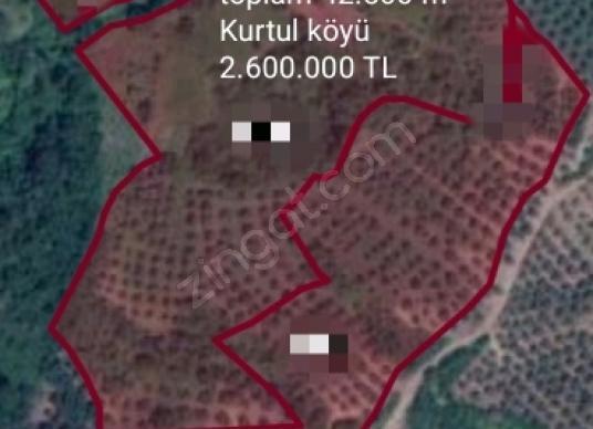 Gemlik Kurtul'da Satılık Bahçe - Harita