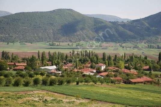 Gölpazarı Aktaş Köyü'de  Çok Amaçlı tarla bağce ve meyvelik - Manzara