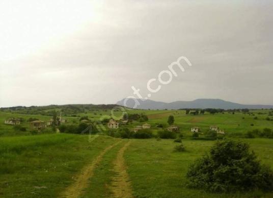 Gölpazarı Bayat Köyü'de Cevizlik bağ bahçe olmaya müsait tarlala - Arsa