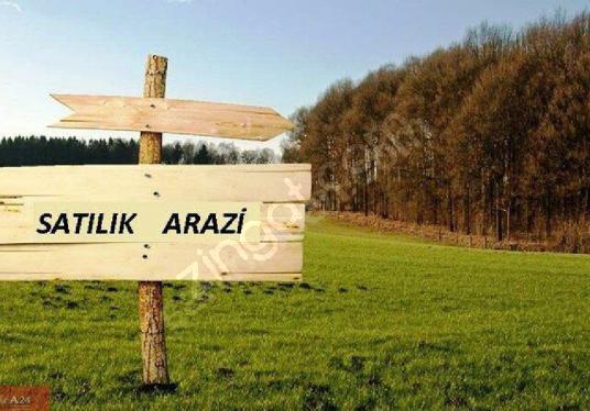 Urla Özbek Burgazda doğa içinde satılık Arazi kod-1871 - Arsa