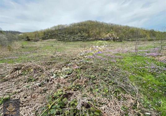 Gölcük Sofular köyünde 14 dönüm Düz Parsel yola 150m Manzaralı