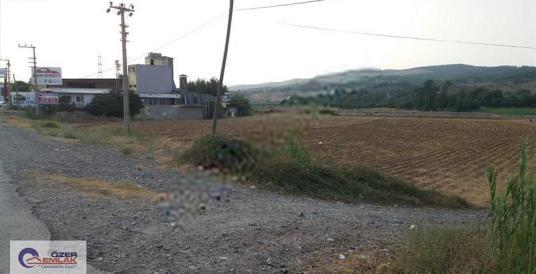 Özer Emlaktan D-400 Karayolu Üzerinde Kiralık Tarla - Arsa