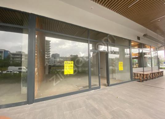 Arman'dan Seba suites kiralık iş yeri - Salon