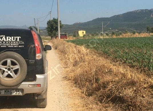 Milas Ekinanbarı'da Bodrum Yoluna Yakın Satılık  Tarla - Arsa