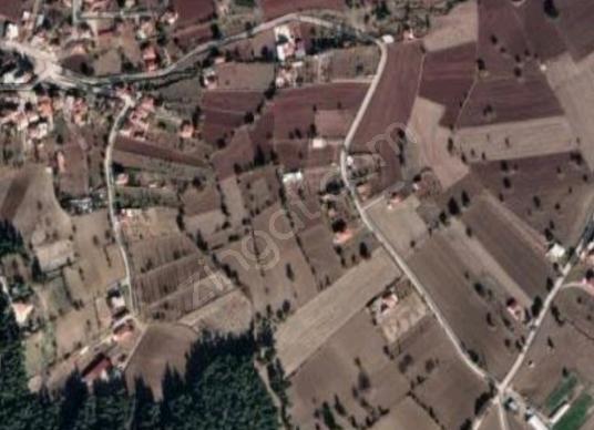 Ekipdema dan  karataş mh yerleşim  yeri içinde SATILIK tarla - Arsa