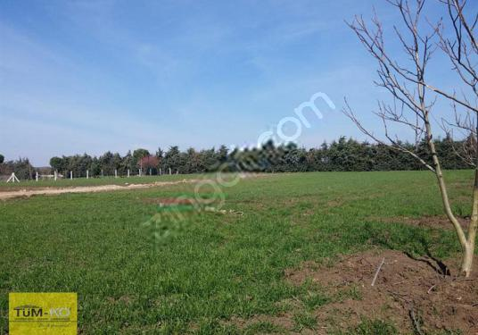 5000 square meters 2+1 bedrooms Farm House For Rent in Silivri, İstanbul - Arsa