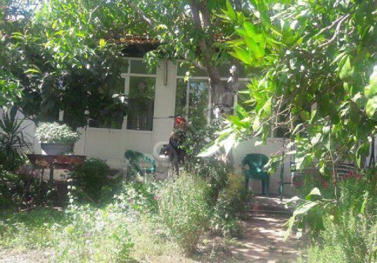 İZMİR ALİĞA HELVACI'DA İSTER SATILIK İSTER KAT KARŞILIĞI ARSA - Bahçe