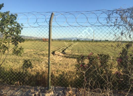 Menemen Çavuş'ta Çanakkale asfaltında Kiralık Çok Amaçlı arazi - Arsa