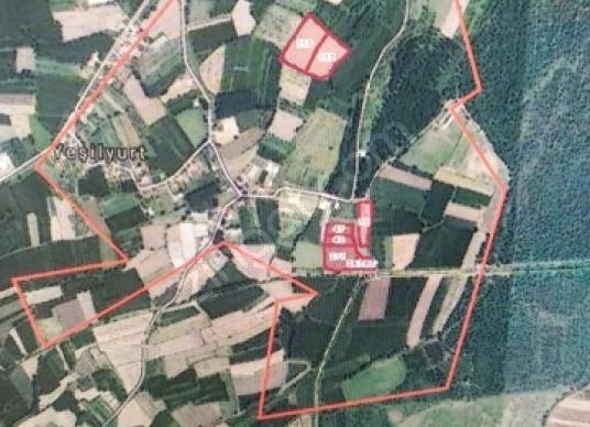 Adapazarı Yeşilyurt'ta Satılık Çiftlik - Harita