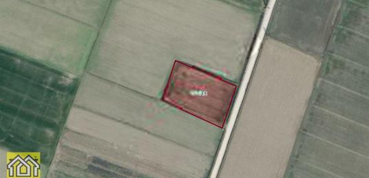 Gerenköyün en verimli arazisi yola 55 metre cepheli 4160m2 - Banyo