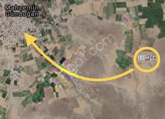 SUNALAR'DAN MAHZEMİNDE 4950 m2 TARLA - Harita