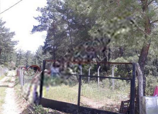 Seferihisar Orhanlı Göktan Kümeevlerinde 521 m2 İçinde Ahşap Ev - Bahçe