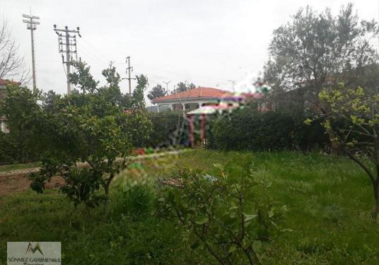 Urla İçmeler de Havuzlu Sitede Satılık Villa - Bahçe