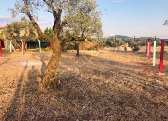 Torbalı dağkizilca da  Satılık resmi tapulu bahçeler - Arsa