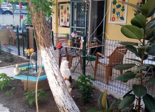 Didim Efeler'de Müstakil Girişli Bahçeli Satılık Daire - Bahçe