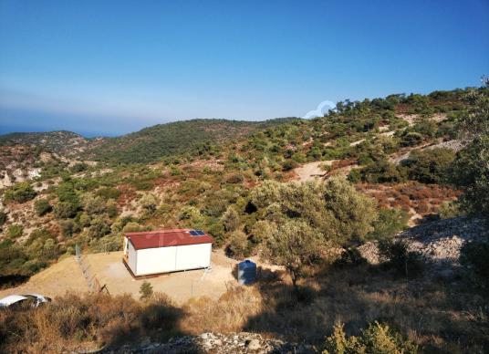 Erman Bingöl'den Foça/Sazlıca'da Yol Üstü,Konteyner Evli Arsa - Manzara