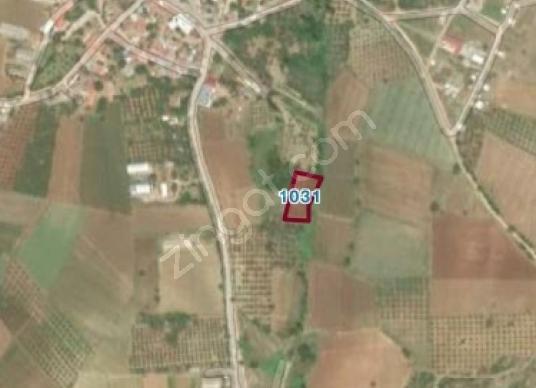 Bursa Karacabey Doğla'da Satılık Tarla - Harita