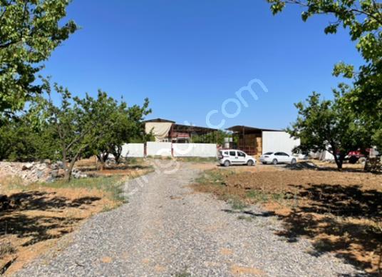 19000 square meters Vineyard For Sale in Akçadağ, Malatya - Sokak Cadde Görünümü