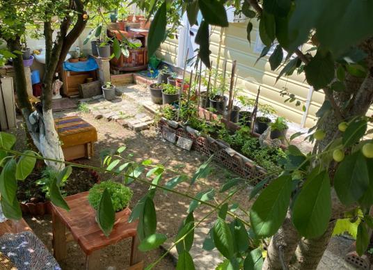 SİLİVRİ GÜMÜŞYAKADA TRİPLEX 4+1 MÜSTAKİL BAHÇELİ VİLLA - Bahçe