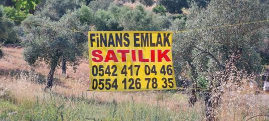Muğla Kızılağaç bölgesinde 20-40 imarlı satılık arsa - undefined