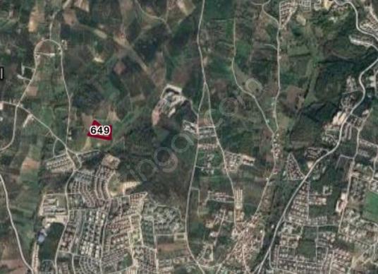 Mudanya Mürsel'de Satılık Tarla - Harita