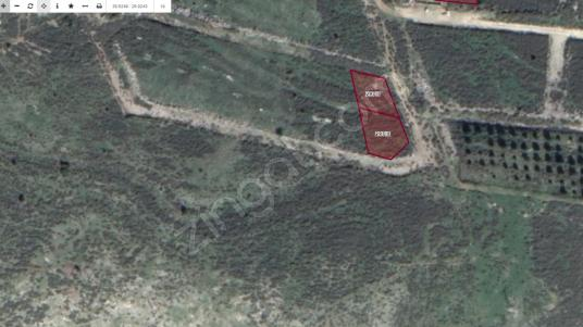 İzmir Menemen Maltepe'de Villa İmarlı SATILIK Arsalar - Arsa