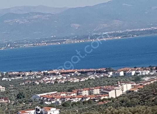 Edremit Çamlıbel'de Satılık Çok Amaçlı Deniz Manzaralı Zeytinlik - Manzara