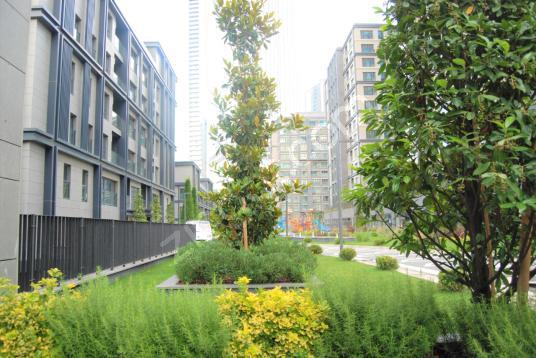Avangart İstanbul 3+1 185 m2 Kiralık Bahçe Katı Daire - Site İçi Görünüm