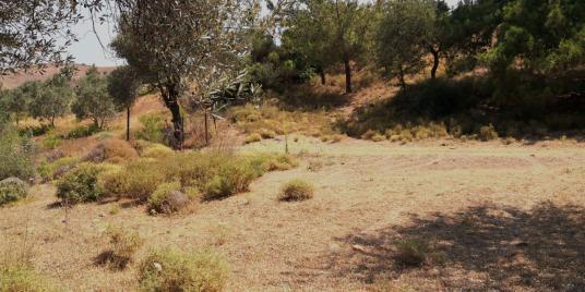 Menderes Orhanlı Satılık Arazi - Arsa