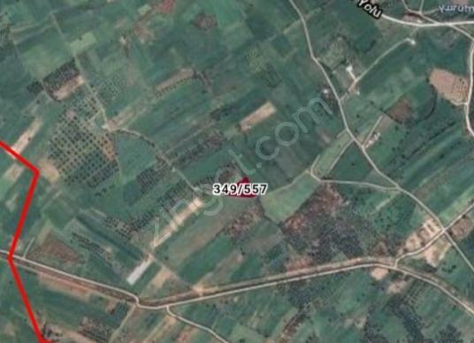 Bodrum Karaova'da Satılık Bahçe - Harita