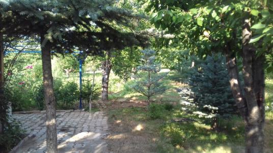 ERKMEN YEŞİL VADİ KONAKLARI YANI KİRALIK BAHÇE 3000 m2 - Bahçe