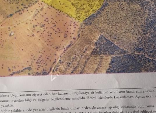 Torbalı Arslanlar'da Satılık Zeytinlik - Kat Planı