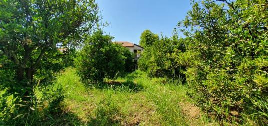 Muğla Ortaca Dikmekavak mahallesinde 1063 m2 imarlı arsa satılık - Arsa