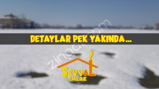 DETAYLAR PEK YAKINDA.. - Logo