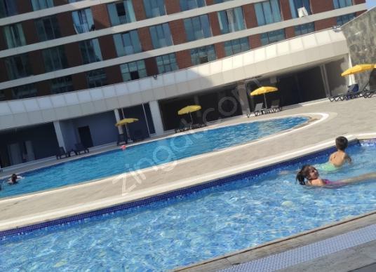 D&S  den  1+1 İnönü'de Kiralık Rezidans - Yüzme Havuzu