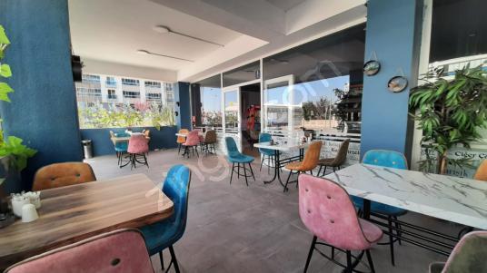 POTANSİYELİ YÜKSEK KÖŞE KONUMDA DEVREN SATILIK CAFE RESTAURANT - Salon