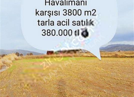 izmir selçuk havalimanı karşısı acil satılık 3800 m2 tarla - Arsa