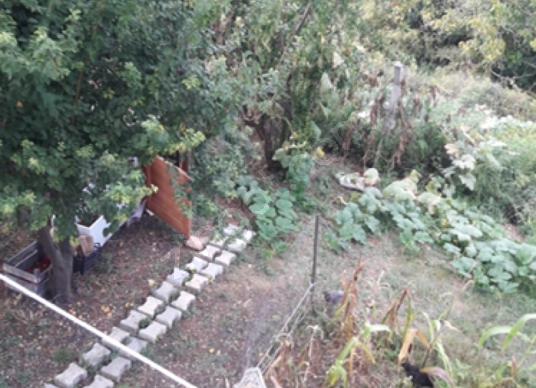 Çınarcık Taşliman'da Satılık Müstakil Ev - Bahçe