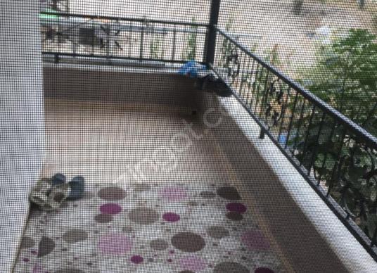 BODRUM YOLU ÜZERİNDE 2 TANE 3+1 MÜSTAKİL BİNA SATILIKTIR - Balkon - Teras