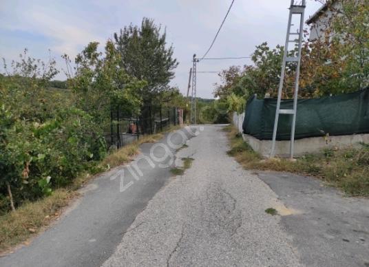 Silivri Büyük Çavuşlu'da Satılık Konut İmarlı - Sokak Cadde Görünümü