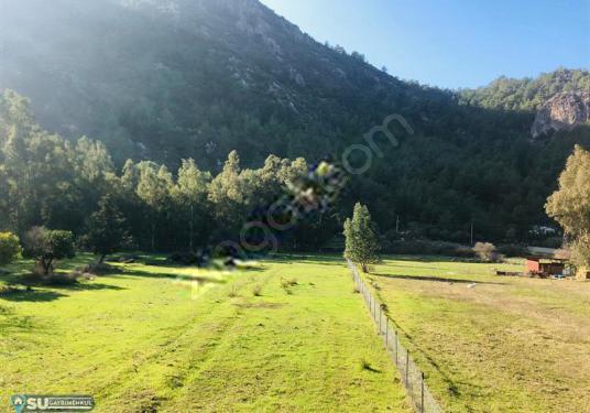 su emlak marmaris turgut köyünde satılık müstakil ev - Arsa