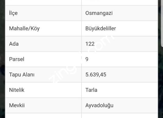 BÜYÜKDELİLLER 'DE 5.639m2 KULLANIM ALANLI SATILIK TARLA - Kat Planı