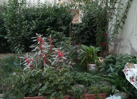 KUMLADA ŞAHİN EMLAKTAN SATILIK HAVUZLU SİTADE 2+1 DAİRE - Bahçe